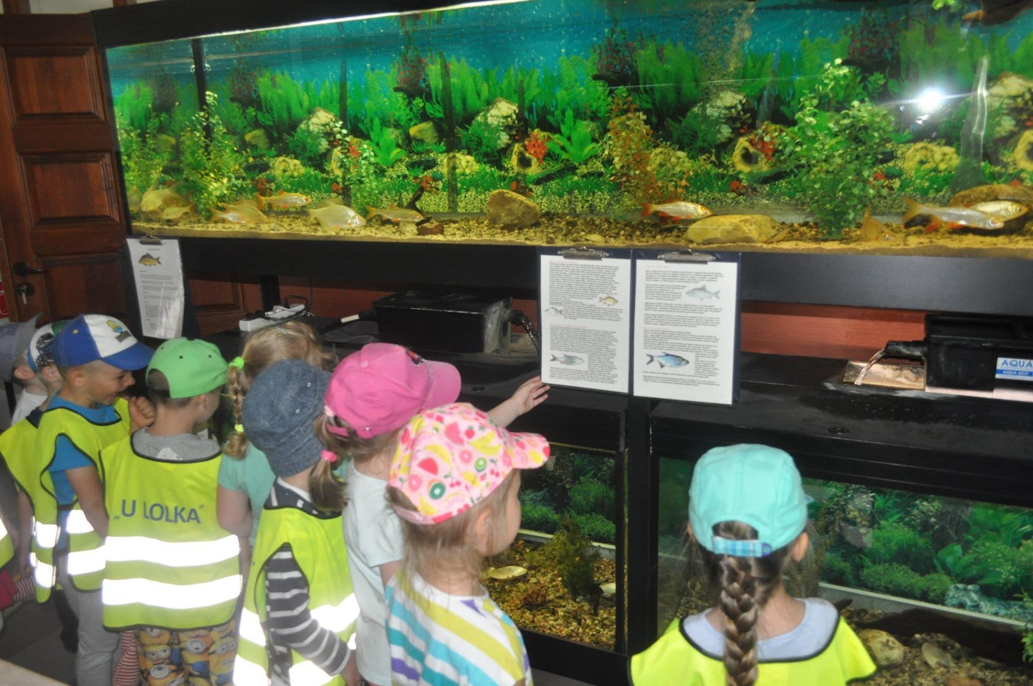 """Przedszkolaki """"U Lolka"""" z wizytą w Centrum Edukacji Ekologicznej"""